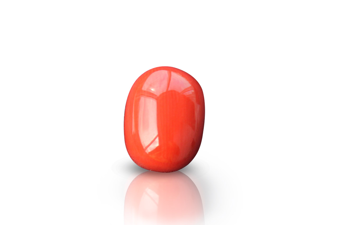 Red Japanese Coral - 14.55 carats