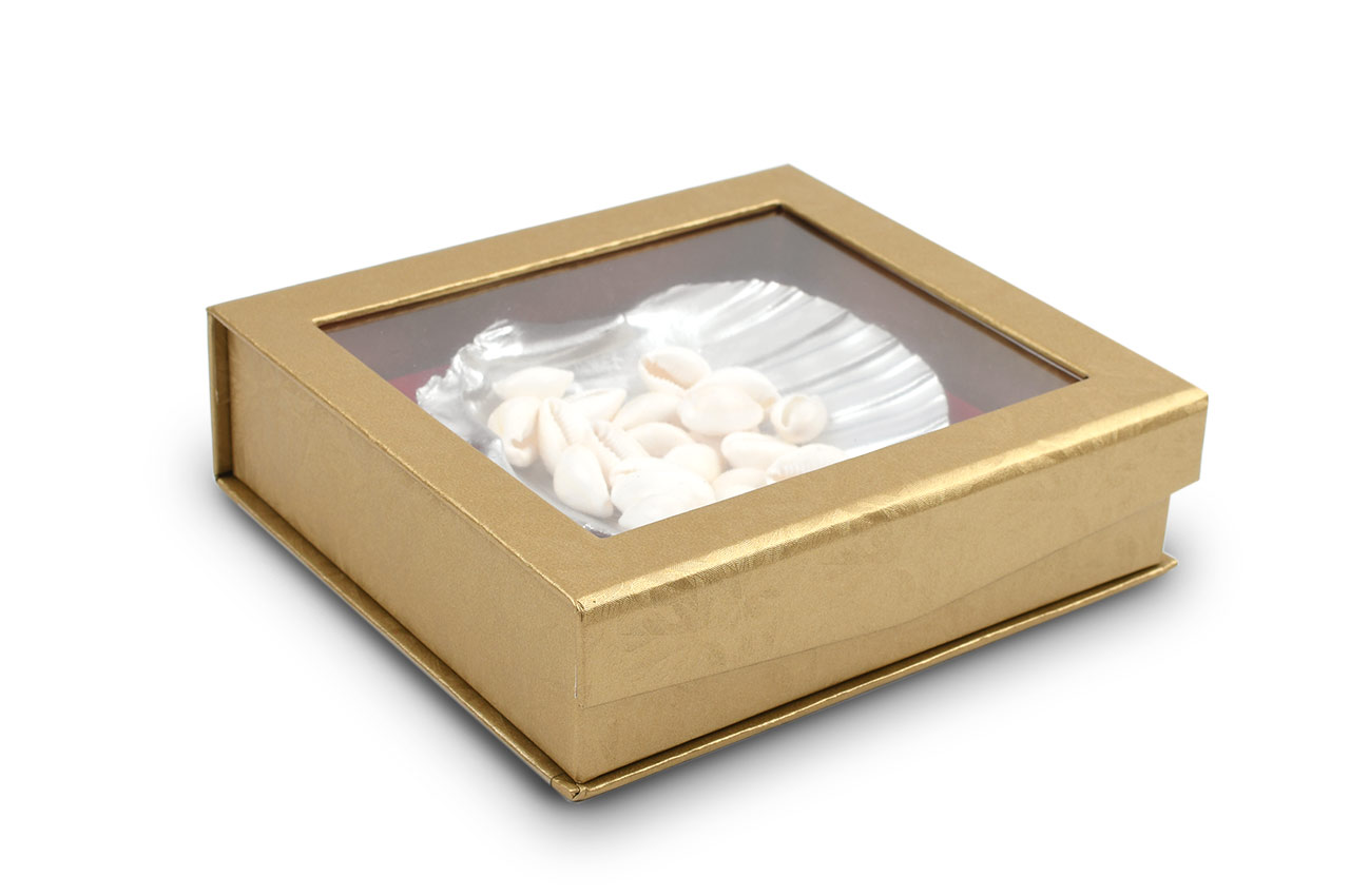 White Cowry Shells Gift Pack