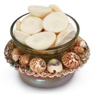 Gomati chakras in shell bowl