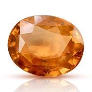 Gomutra Gomed - 4.25 carats - I