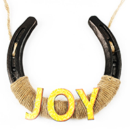 Horse Shoe Artifacts - Joy