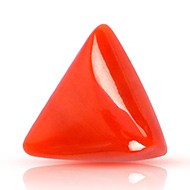 Italian Coral triangular - 12 carats