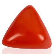 Italian Coral triangular - 18.95 carats