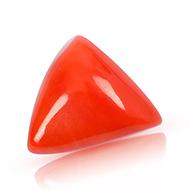 Italian Coral triangular - 19.35 carats