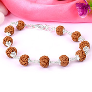 Rare 5 mukhi semi chikna bracelet - 10mm