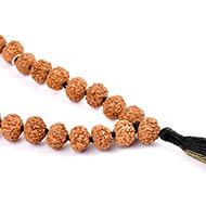 Rare 7 mukhi Mahalaxmi mala - 13mm button shape