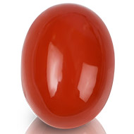 Red Italian Coral - 22.65 carats