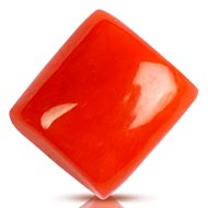 Red Italian Coral - 4.30 carats