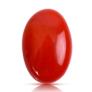 Red Japanese Coral - 4.65 carats