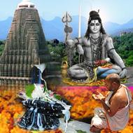Rudra Abhishek at Trimbakeshwar Temple