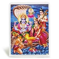 Vishnu Laxmi Glittering Photo - I